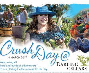 darling-cellars-crush-day