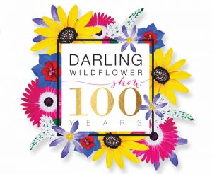 Darling Wildflower Show 2017
