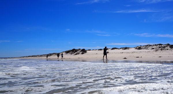 West Coast Way Crayfish Trails