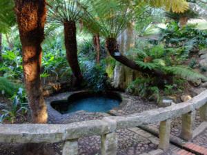 Kirstenbosch-National-Botanical-Garden-01