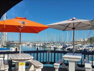 West-Coast-Way-Cape-Town-Club-Mykonos-12