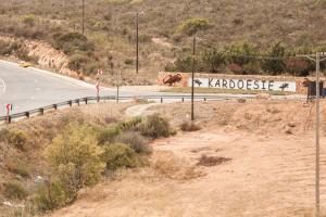 West-Coast-Way-Cape-Town-Kardoesie-10