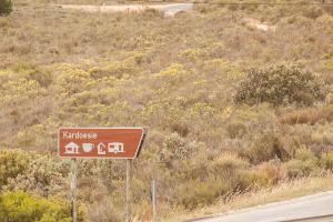 West-Coast-Way-Cape-Town-Kardoesie-12