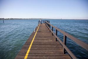 West-Coast-Way-Cape-Town-Protea-13