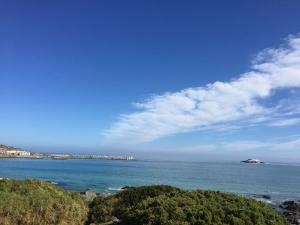West-Coast-Way-Cape-Town-Yzerfontein-10