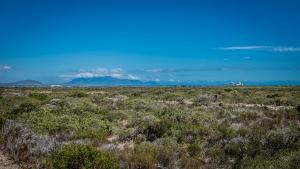 West-Coast-Way-Cape-Town-Yzerfontein-12